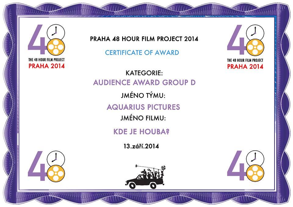 48hfp2014-award